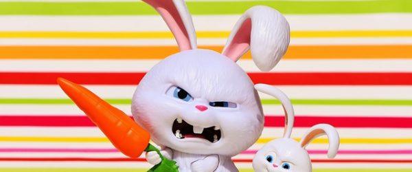 attractief-karakter-konijn